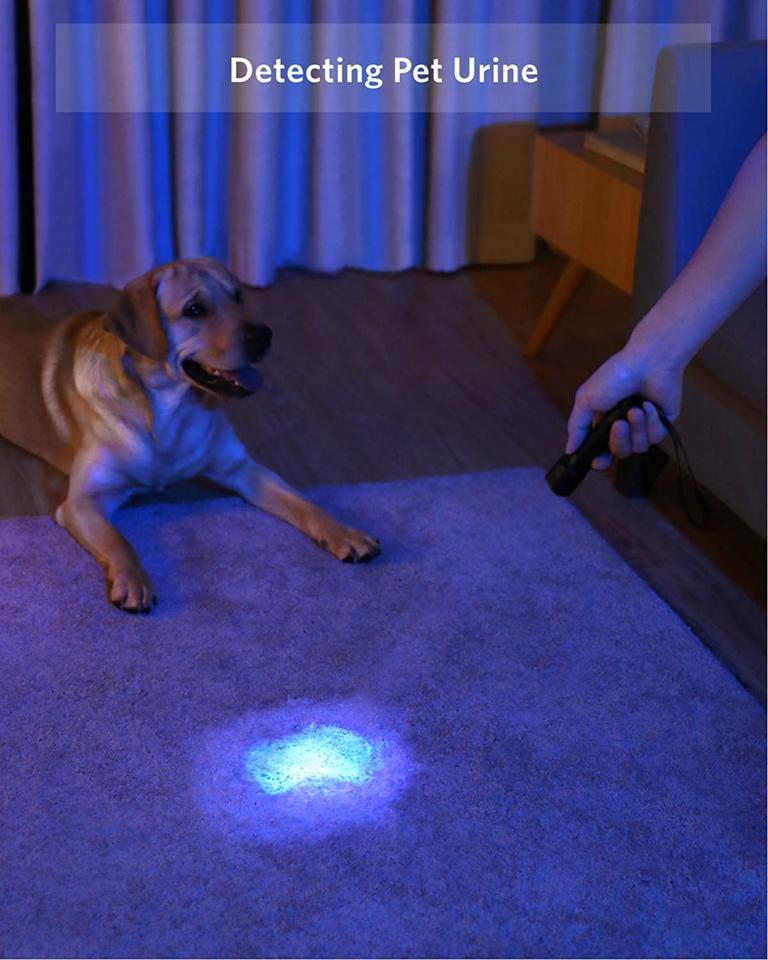 T1429011 Anker Bolder UV flashlight Rechargeable
